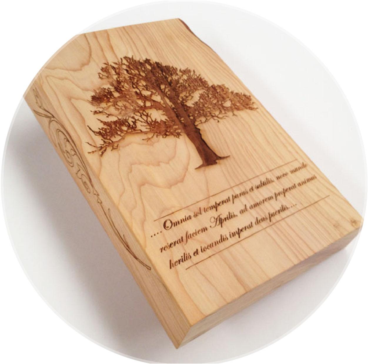 pieza de madera grabada con equipo HSCO2-30W